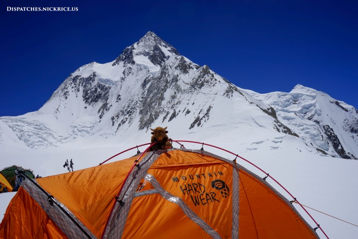 Base Camp Buffalo on my tent in Camp I with a beautiful view of Gasherbrum I in the background