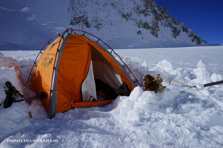 Dahl Baht and Base Camp Buffalo in Camp II (6417m/21,052ft)