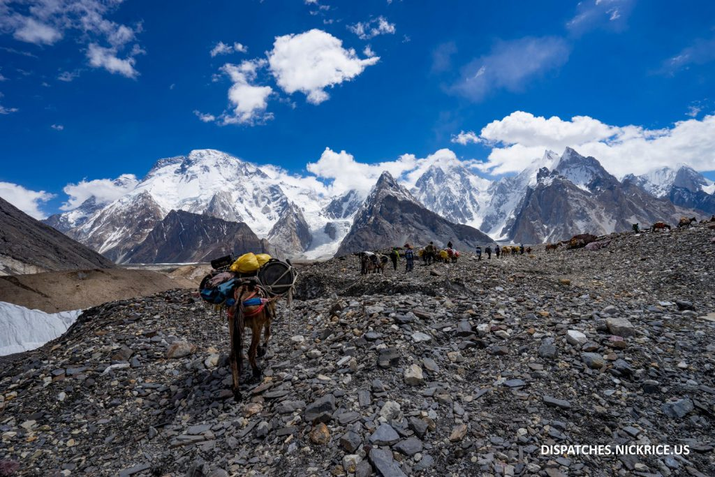 Horses, porters, and climbers arriving to Concordia with Broad Peak, Gasherbrum IV and Mitre Peak visible (from left to right)